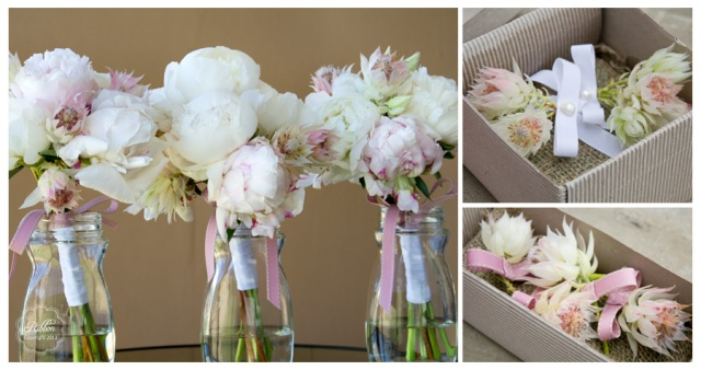 Pink and white peonies and blushing bride boutonnieres
